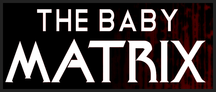 The Baby Matrix by Laura Carroll